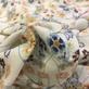 Хлопок плотный мягкий букеты ромашек на молочном фоне
