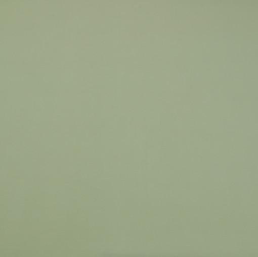 Крепдешин зеленого разбеленного цвета