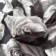 Хлопок тонкий летний стрейч принт D&G розы в серых тонах