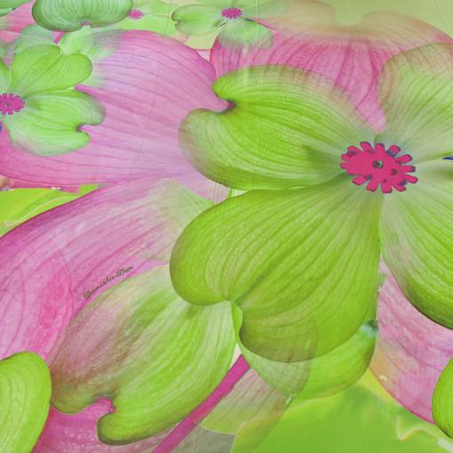 Шелк атласный Daniela Drei салатовые орхидеи