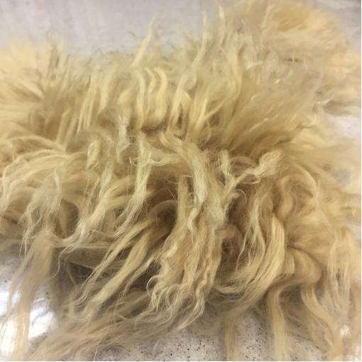 Мех натуральный для воротника из овчины ванильного цвета 10х50 см