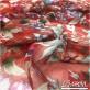 Шелк шифон дизайн Gucci вьющиеся цветы на красном фоне